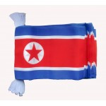 North Korea Bunting Flag