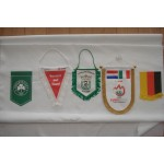 Different Shapes of Custom Gift Flags